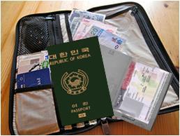 lost visa