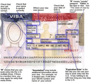 How do I read and understand my visa
